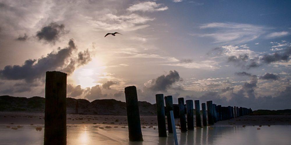 Padre Island National Seashore Beach Sunset